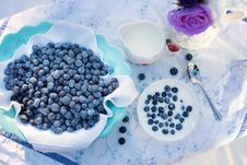Free Blueberry, Berry, Food, Superfood Stock Photography - 89915542