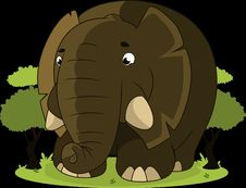 Free Elephants And Mammoths, Elephant, Mammal, Indian Elephant Stock Photography - 89916442