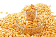 Free Corn Kernels, Vegetarian Food, Food, Maize Stock Photos - 89917163