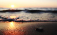 Free Close Up Photography Of A Pebble Near The Beach Royalty Free Stock Images - 89961529