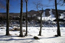 Free New England Winter Royalty Free Stock Photo - 91765