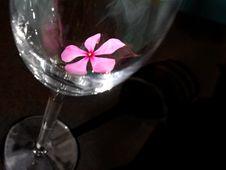 Free Black Glass Flower Royalty Free Stock Image - 92156