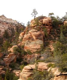 Free Zion National Park 3 Royalty Free Stock Photography - 94607
