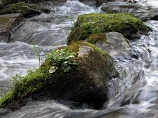 Free River Detail Royalty Free Stock Image - 95046
