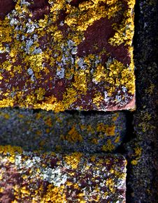 Free Closeup Of Bricks With Moss Stock Image - 95731