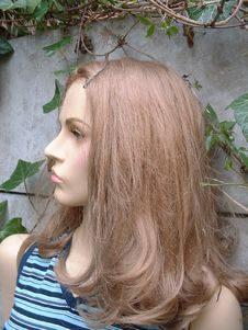 Free Female Mannequin Stock Photography - 96122