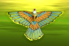 Free Kite Royalty Free Stock Images - 96239