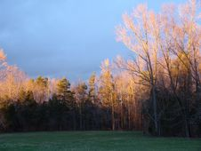 Free Sunset4 Stock Photo - 97880