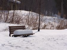 Free Park Bench Royalty Free Stock Image - 98926