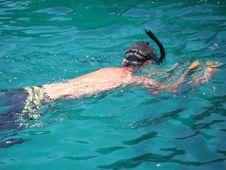 Free Snorkeling Royalty Free Stock Image - 901396
