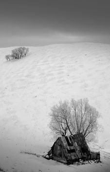 Free Dark Winter Stock Photos - 904403