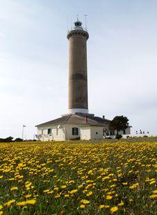 Free Lighthouse Stock Photos - 904643
