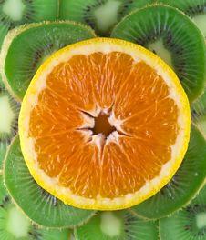 Free Fresh Fruit Stock Image - 904821