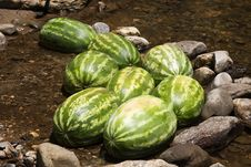 Free Cold Watermelon! Royalty Free Stock Photography - 906577
