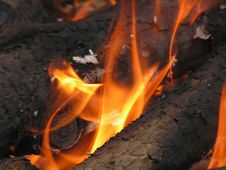 Free Logs On Fire Stock Photos - 906893