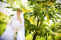 Free Bride With Orchids Royalty Free Stock Photos - 9000198