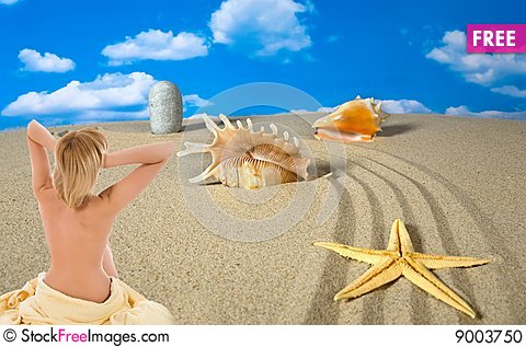 Free Landscape With Seashell And Stones On Sky Stock Photo - 9003750