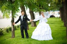 Free Kiss Of Bride And Groom Royalty Free Stock Photos - 9000308