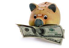 Free Piggy Bank - Financial Crisis Royalty Free Stock Photo - 9001995