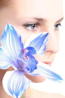 Free Eye And Orchid Royalty Free Stock Images - 9003649