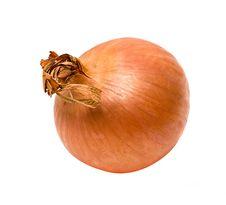 Free Onion Royalty Free Stock Photos - 9005398