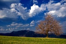 Free Peacefull Landscape Stock Photography - 9005552