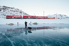 Free Person Walking Dog On Frozen Lake Stock Images - 90098144