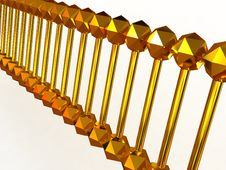 Free Gene In DNA Royalty Free Stock Photography - 9011317