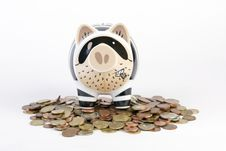 Free Piggybank Royalty Free Stock Photography - 9015747