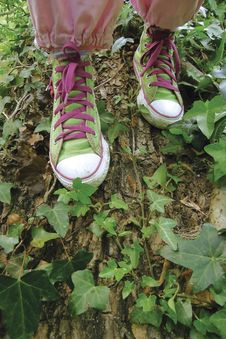Free Sneakers, Tennis Shoe Royalty Free Stock Photos - 9017508