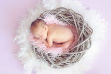 Free Baby Sleeping In A Basket And A Round Feather Surrounding The Basket Royalty Free Stock Photos - 90156068