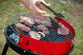 Free Grilling Meat Royalty Free Stock Photo - 9021495