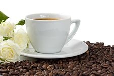 Free A Cup Of Coffee Roses And Coffee Beans Isolated Royalty Free Stock Images - 9020079