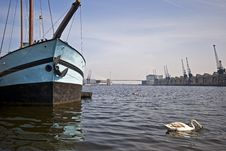 Free Boat In The Docks With Swans Stock Photos - 9021613