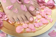 Beautiful Woman S  Feet With Rose Petals Stock Photos