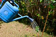 Free Watering Can Stock Photo - 9022320