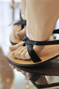 Free Fashion Shoes On Display Royalty Free Stock Images - 9023279