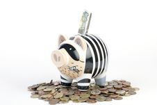 Free Piggybank Royalty Free Stock Photography - 9023377