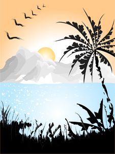 Landscape With Palm Royalty Free Stock Images