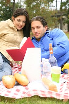 Free Reading Book On Picnic Trip Royalty Free Stock Photography - 9029437
