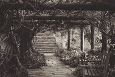Free Wooden Bench Under Vine Covered Arbor Near Stairway In Grayscale Photography Royalty Free Stock Photos - 90279038