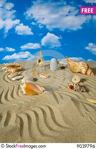 Free Landscape With Seashell And Stones On Sky Royalty Free Stock Image - 9039796