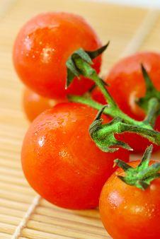 Free Red Tomato Series 1 Royalty Free Stock Photos - 9030398