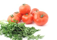 Tomatoes With Parsley Royalty Free Stock Photography