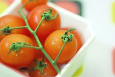 Free Red Tomato Royalty Free Stock Image - 9031626