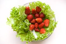 Free Lettuce And Strawberry Stock Photo - 9032710