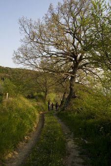Free Walking On Mountains Stock Image - 9035901