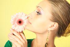 Free Shiny Royalty Free Stock Photography - 9036647