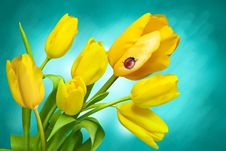 Free Flower, Yellow, Flowering Plant, Wildflower Royalty Free Stock Image - 90359656