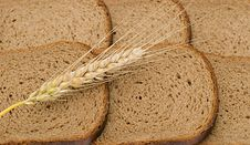 Wheat Ear Laying On Slices Of Bread Royalty Free Stock Images